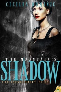 moutainshadow