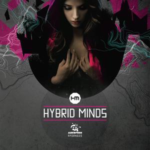 hybridmind